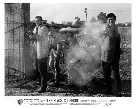 black scorpion3