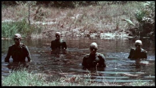 Image result for shock waves 1977